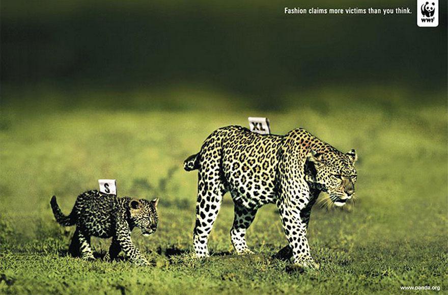 public-social-ads-animals-127